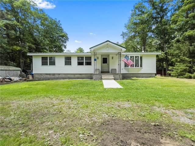 152 Lakeview Drive Road, Highland Lake, NY 12743 (MLS #H6130220) :: Howard Hanna | Rand Realty