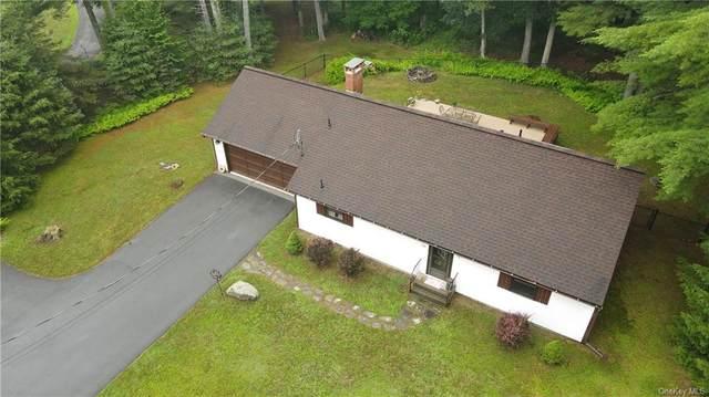 527 Route 434 Route, Shohola, PA 18458 (MLS #H6130309) :: Cronin & Company Real Estate
