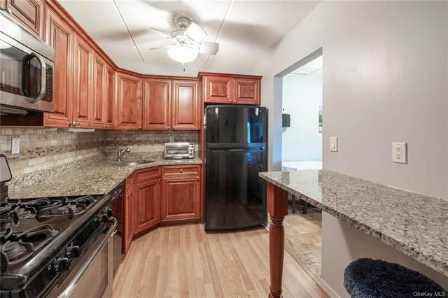 470 Halstead Avenue 4E, Harrison, NY 10528 (MLS #H6131022) :: McAteer & Will Estates   Keller Williams Real Estate