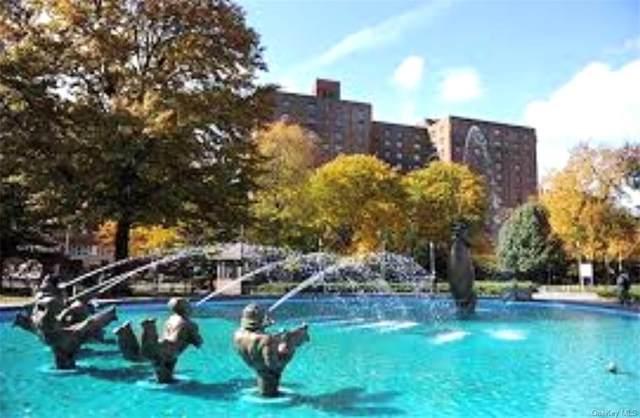 1598 Unionport Road 4C, Bronx, NY 10462 (MLS #H6131166) :: Frank Schiavone with Douglas Elliman