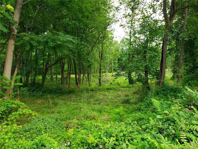 First Street Lot 4, Milton, NY 12547 (MLS #H6131186) :: Kendall Group Real Estate | Keller Williams