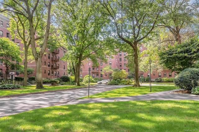 224 Larchmont Acres West 4B, Larchmont, NY 10538 (MLS #H6131900) :: Laurie Savino Realtor
