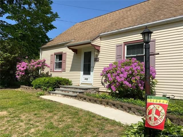 125 Chestnut Drive, New Windsor, NY 12553 (MLS #H6132051) :: Howard Hanna | Rand Realty