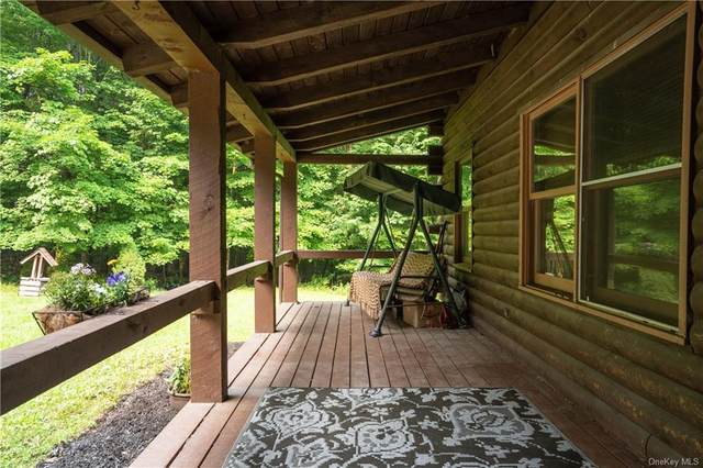 65 Ridge Drive, Middletown, NY 10940 (MLS #H6132054) :: Signature Premier Properties