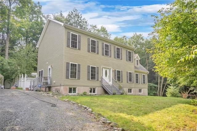 14 Andrew Lane, Bethel, NY 12786 (MLS #H6132228) :: Carollo Real Estate