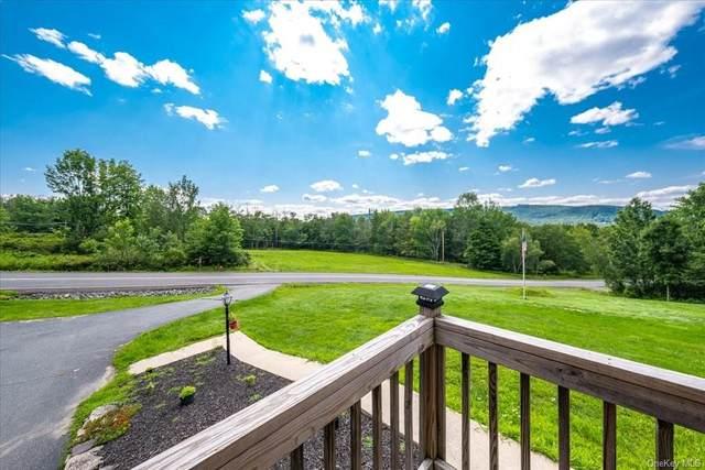 205 S Hill Road, Grahamsville, NY 12740 (MLS #H6132278) :: Goldstar Premier Properties