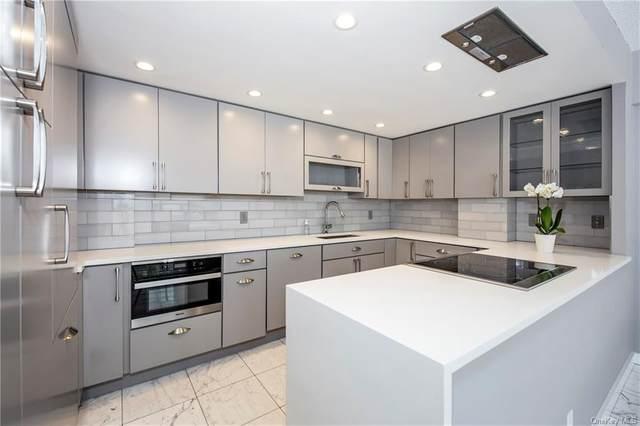 15 Stewart Place 1K, White Plains, NY 10603 (MLS #H6132649) :: Goldstar Premier Properties
