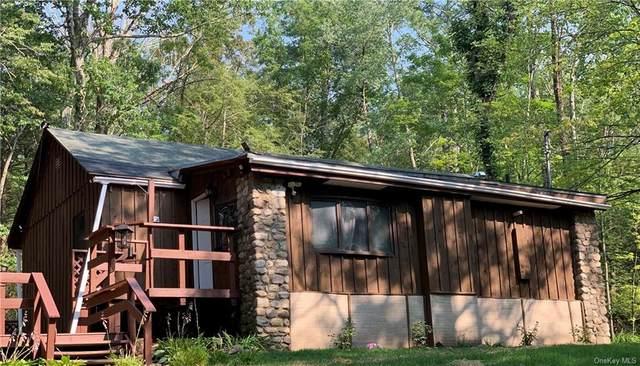 654 Pine Kill Road, Wurtsboro, NY 12790 (MLS #H6132952) :: Howard Hanna | Rand Realty
