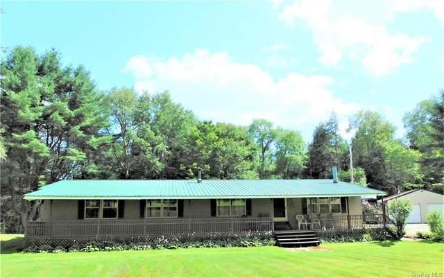 45 Old Taylor Road, Jeffersonville, NY 12748 (MLS #H6133659) :: Carollo Real Estate