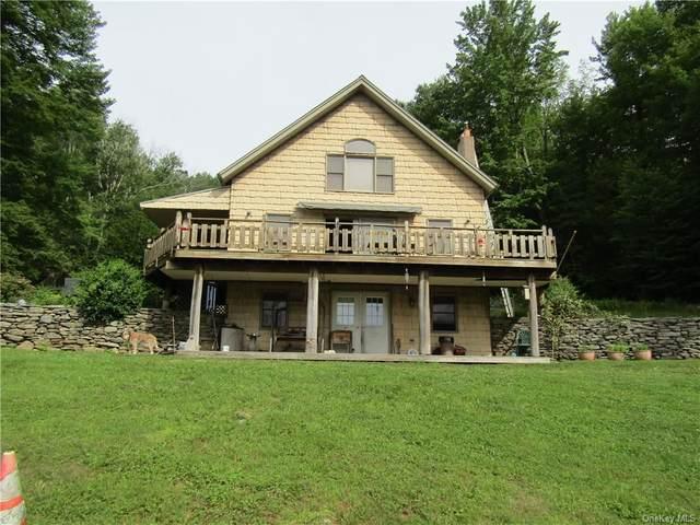 385 Sundown Road, Grahamsville, NY 12740 (MLS #H6134205) :: Goldstar Premier Properties