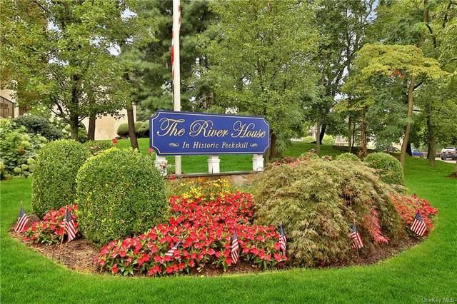 152 Overlook Avenue 1E, Peekskill, NY 10566 (MLS #H6135224) :: Laurie Savino Realtor