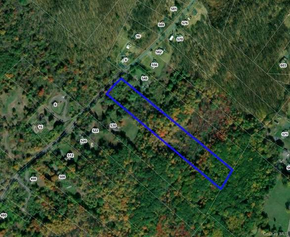 Old Mountain Road, Port Jervis, NY 12771 (MLS #H6135380) :: The McGovern Caplicki Team