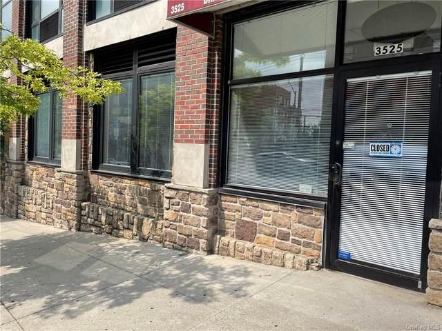3525 Riverdale Avenue, Bronx, NY 10463 (MLS #H6135698) :: Goldstar Premier Properties