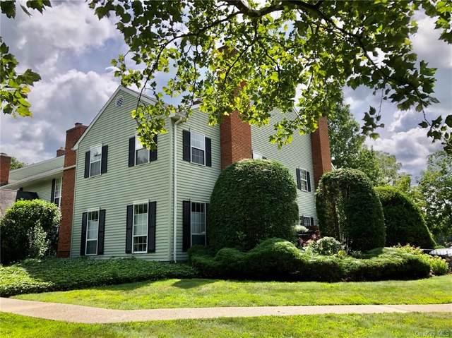 49 Homestead Village Drive, Warwick, NY 10990 (MLS #H6135944) :: The McGovern Caplicki Team