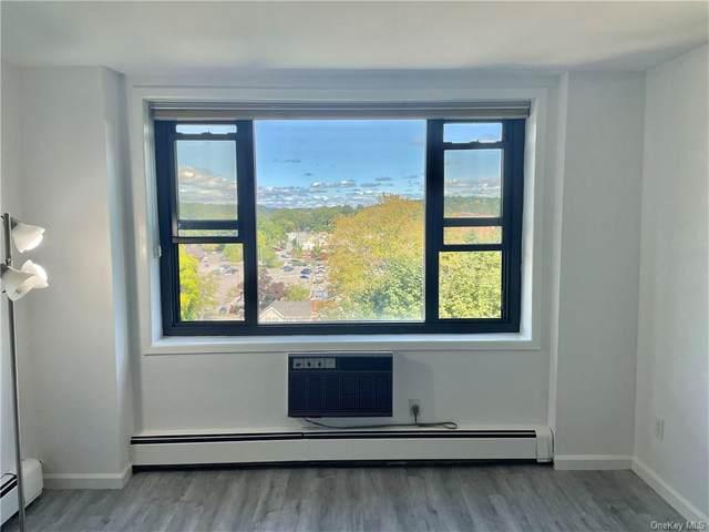 25 Stewart Place #618, Mount Kisco, NY 10549 (MLS #H6136938) :: Kendall Group Real Estate | Keller Williams