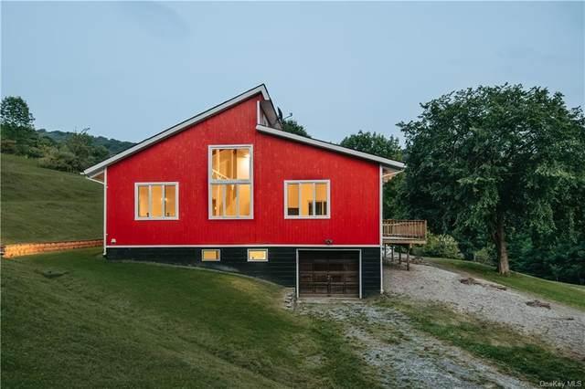 81 Old Baker Road, Arkville, NY 12406 (MLS #H6137161) :: Cronin & Company Real Estate