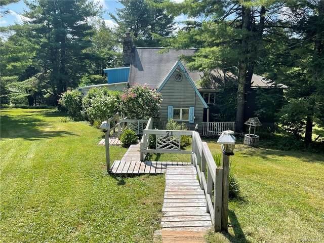 71 Kawlija Road, Grahamsville, NY 12740 (MLS #H6138540) :: Cronin & Company Real Estate
