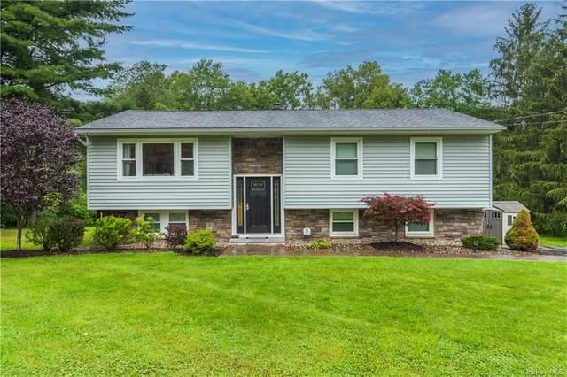 185 Horseshoe Road, Millbrook, NY 12545 (MLS #H6139125) :: Goldstar Premier Properties