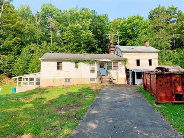 56 Registro Road, Pine Bush, NY 12566 (MLS #H6139216) :: Cronin & Company Real Estate