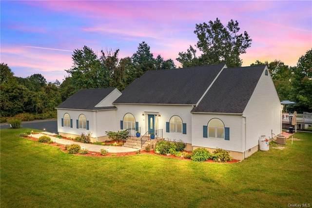 21 Butler Lane, Rock Tavern, NY 12575 (MLS #H6139605) :: Goldstar Premier Properties