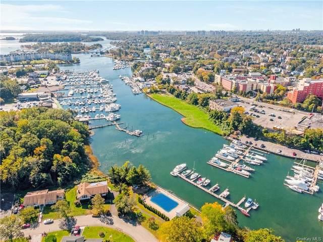 333 Davenport Avenue, New Rochelle, NY 10805 (MLS #H6140047) :: Carollo Real Estate