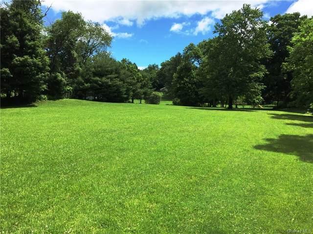 68 lot 1 & 2 Somerstown Road, Ossining, NY 10562 (MLS #H6140358) :: Mark Seiden Real Estate Team