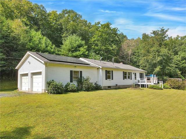 241 County Route 31, Glen Spey, NY 12737 (MLS #H6140500) :: Goldstar Premier Properties