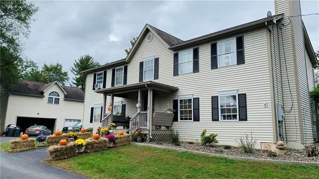 17 Brendella Court, Wallkill, NY 12589 (MLS #H6140838) :: Carollo Real Estate