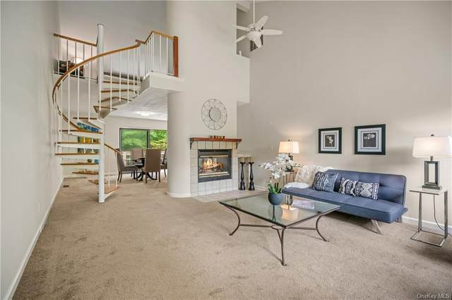 245 Deer Hill, South Salem, NY 10590 (MLS #H6140871) :: Cronin & Company Real Estate