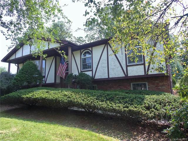294 Manor Boulevard, Pearl River, NY 10965 (MLS #H6141216) :: Corcoran Baer & McIntosh
