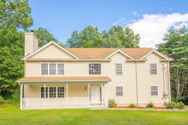 1591 Forestburgh Road, Glen Spey, NY 12737 (MLS #H6141384) :: Goldstar Premier Properties