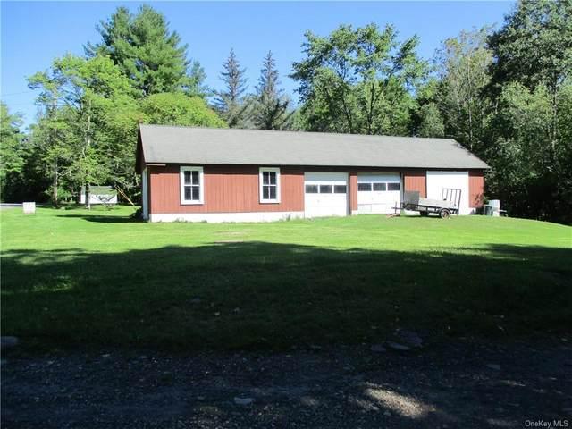 tbd Grey Road Tr 39, Fallsburg, NY 12733 (MLS #H6141408) :: Goldstar Premier Properties