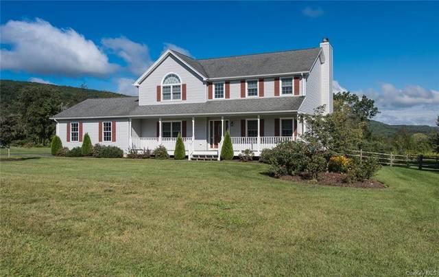 11 Benson Lane, Dover Plains, NY 12522 (MLS #H6141640) :: Goldstar Premier Properties