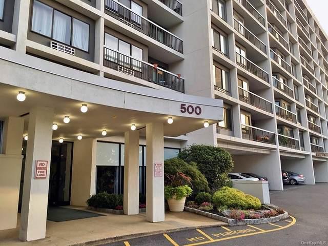 500 High Point Drive Ph13, Hartsdale, NY 10530 (MLS #H6142137) :: Corcoran Baer & McIntosh