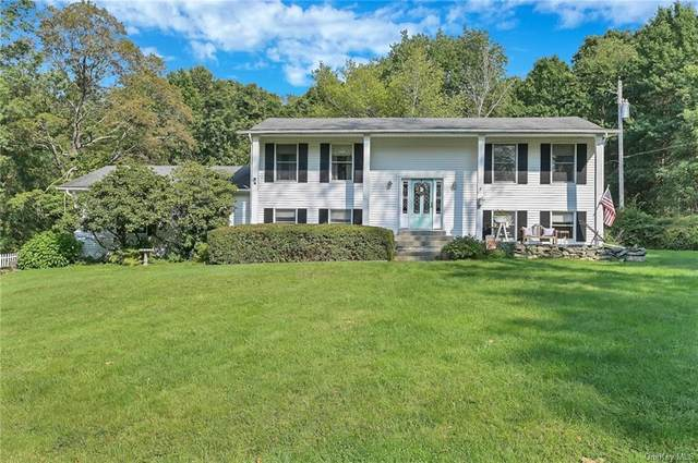 117 Warn Avenue, Pine Bush, NY 12566 (MLS #H6142524) :: Cronin & Company Real Estate