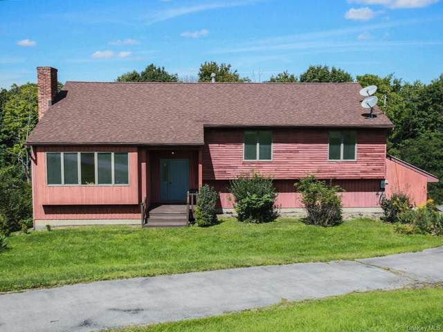 231 Greeves Road, New Hampton, NY 10958 (MLS #H6142644) :: Kendall Group Real Estate | Keller Williams