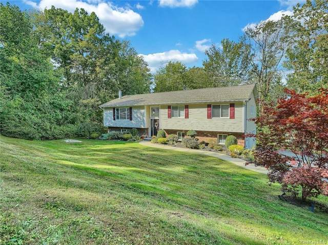 13 Watergate Drive, Amawalk, NY 10501 (MLS #H6142817) :: Cronin & Company Real Estate