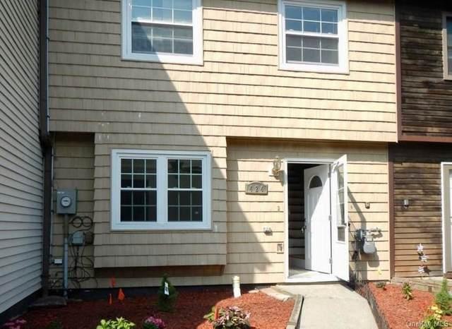 424 Rakov Road, Maybrook, NY 12543 (MLS #H6142818) :: Cronin & Company Real Estate