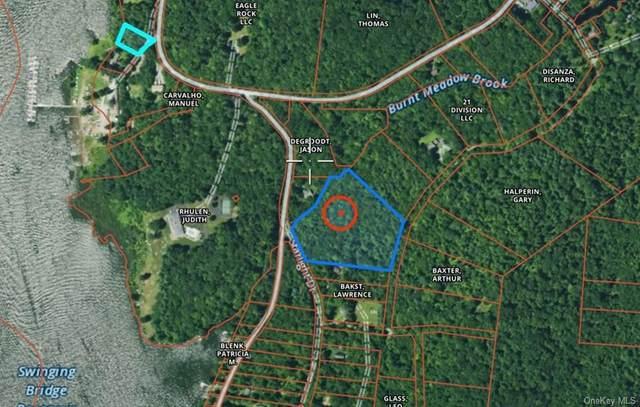 Starlight Road, Monticello, NY 12701 (MLS #H6142890) :: Mark Boyland Real Estate Team