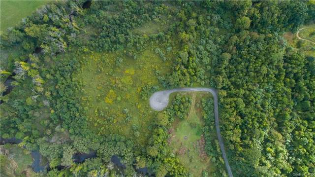 Lot 15 Old State Route 22, Dover Plains, NY 12522 (MLS #H6143238) :: Goldstar Premier Properties