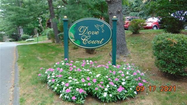 9 Dove Court I, Croton-On-Hudson, NY 10520 (MLS #H6143309) :: Laurie Savino Realtor