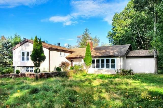 377 Sleepy Hollow Road, Briarcliff Manor, NY 10510 (MLS #H6143525) :: Mark Seiden Real Estate Team