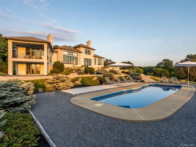 44 Willow Brook Ridge, Clinton Corners, NY 12514 (MLS #H6143558) :: Cronin & Company Real Estate