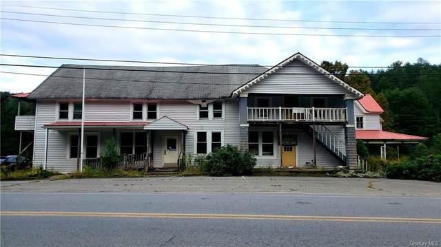 1074 Claryville Road, Claryville, NY 12725 (MLS #H6143666) :: Cronin & Company Real Estate