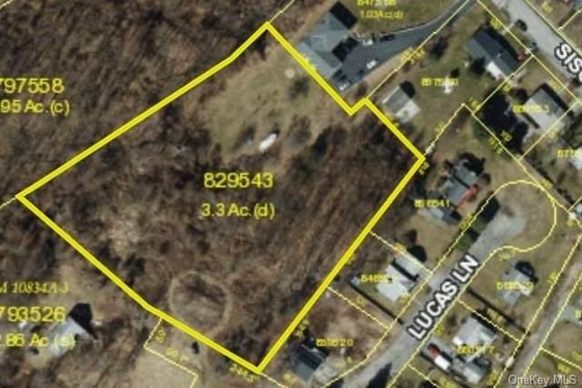 Lucas Lane, Beacon, NY 12508 (MLS #H6144194) :: Kendall Group Real Estate | Keller Williams