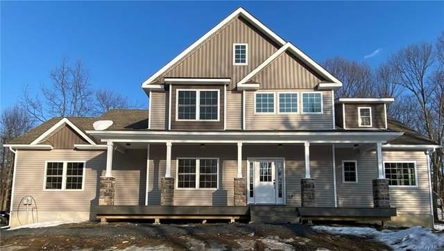 Lot #8 Bruyn Avenue, Pine Bush, NY 12566 (MLS #H6146745) :: Corcoran Baer & McIntosh