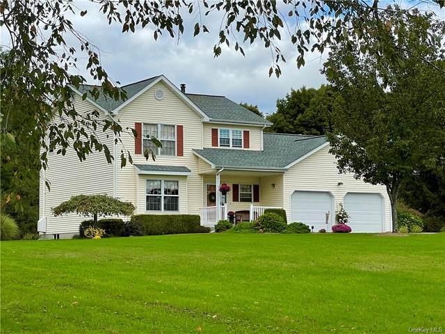 733 Bullville Road, Montgomery, NY 12549 (MLS #H6146772) :: Corcoran Baer & McIntosh