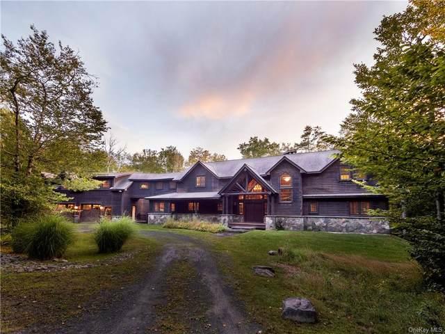 312 Chapin Trail, Bethel, NY 12720 (MLS #H6148001) :: Carollo Real Estate