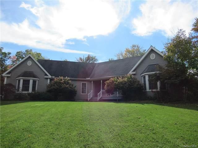 25 Anderson Road, Pawling, NY 12564 (MLS #H6149240) :: Cronin & Company Real Estate