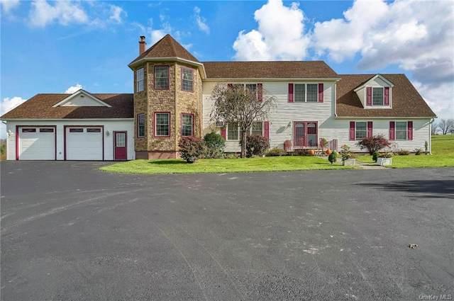 430 Hubert Road, Jeffersonville, NY 12748 (MLS #H6149479) :: Barbara Carter Team